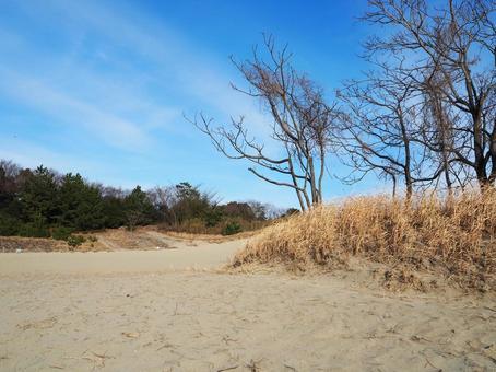 모래와 푸른 하늘