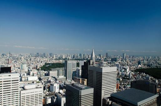 Distant view of Tokyo