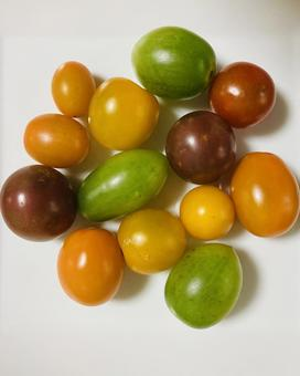 Color tomatoes (7)