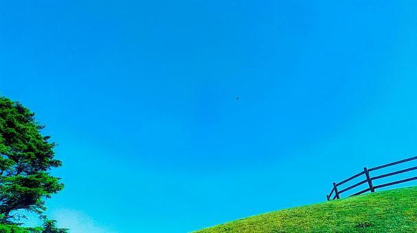 Clear sky, plateau and birds