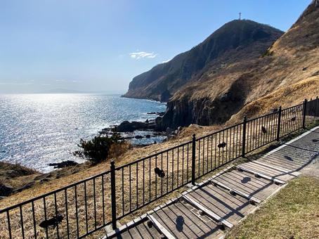 The cliff of Mt. Hakodate (Cape Tachimachi)