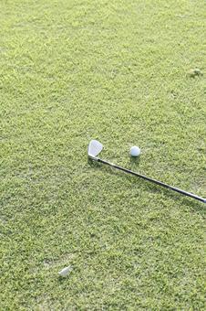 Grass club and golf ball 9