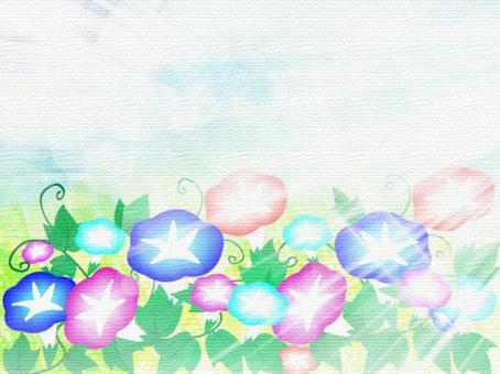 Asagao日本纸01