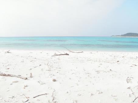 하얀 모래 1