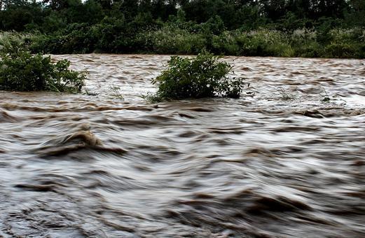 태풍시의 강