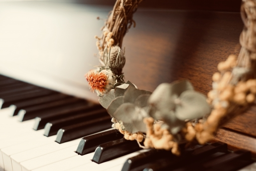 Music image / keyboard and dried flowers