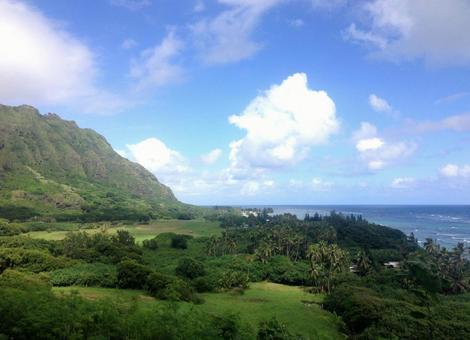 Hawaiian scenery 45