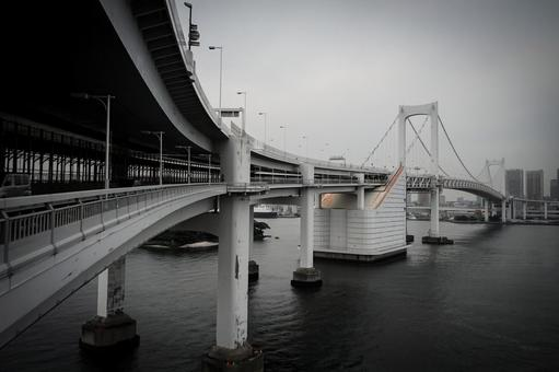 Tokyo Rainbow Bridge (monochrome processing)