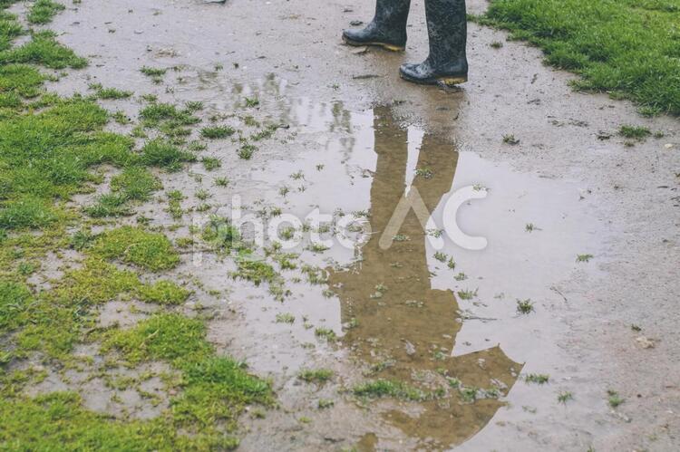 雨に濡れた地面14の写真
