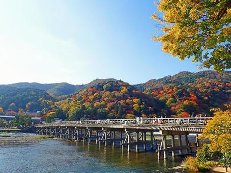 Kyoto Arashiyama 4 of autumn leaves