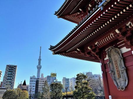 Great Warashi and Sky Tree