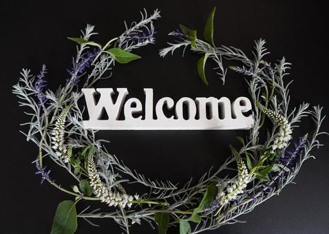 [Message] Welcome & Wildflower c