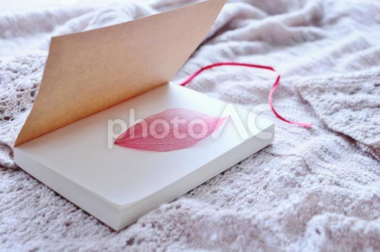 紅い葉とノートの写真