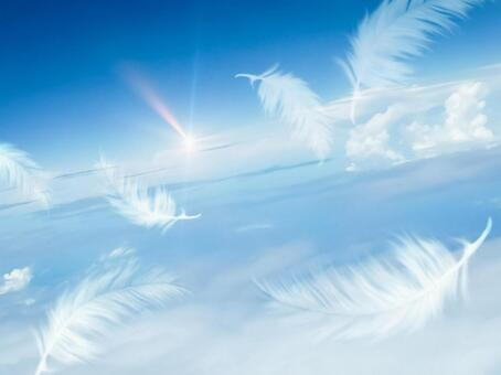 Feathers flying against the blue sky