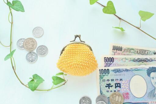 돈과 노란 동전
