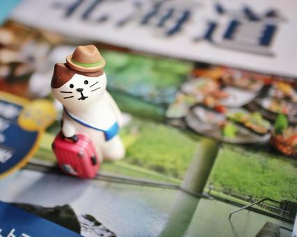 여행 가방을 들고 고양이와 관광 팜플렛