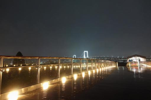 Tokyo Rainbow Bridge 3