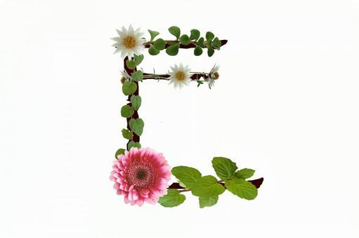 Flower text E