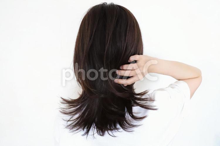 髪の毛を触る女性の後ろ姿の写真