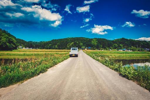 Rice fields and light trucks