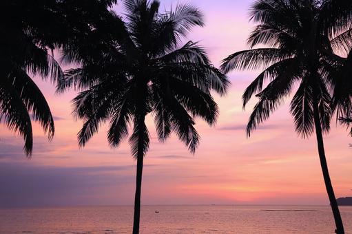 Beach resort 283