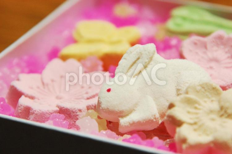 カラフルな和菓子 桜 ウサギの砂糖菓子 金平糖の写真