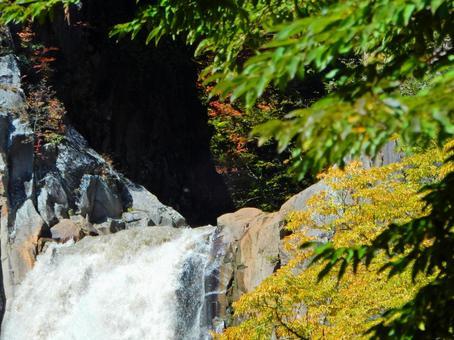 Myoko Series (Ninami Falls and Autumn Leaves)