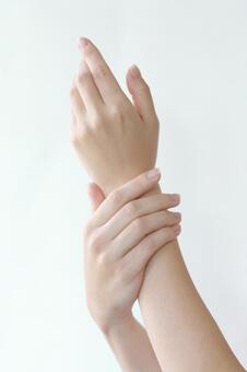 여성의 손