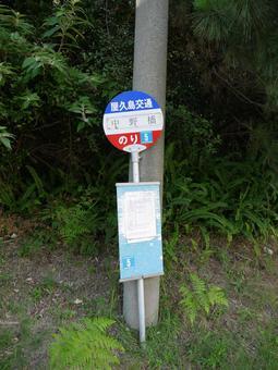 屋久岛公交车站