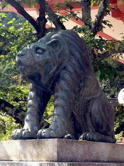 구라 마데 라 아운의 호랑이