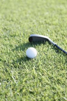Grass Club and Golf Ball 18