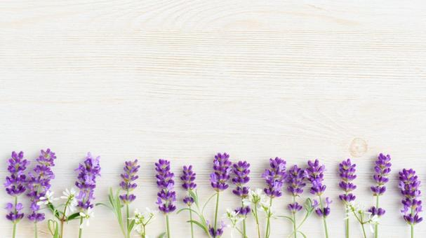 Lavender wood grain background