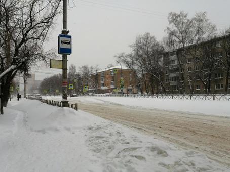 러시아의 겨울
