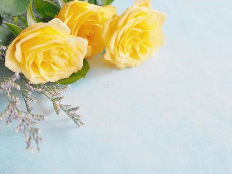 Yellow rose botanical frame