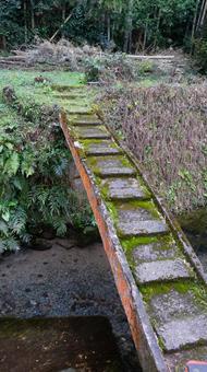 풍경 위험한 다리 1