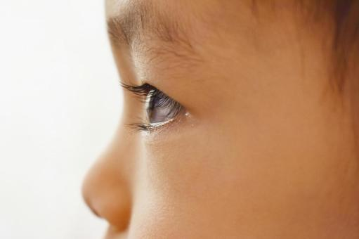 아이의 옆모습 바라 보는 아이 집중하는 아이
