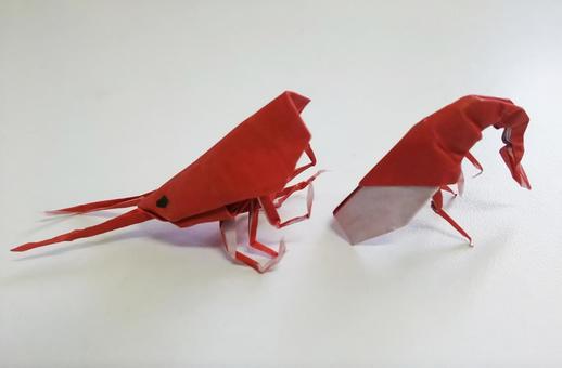 종이 접기의 붉은 새우 사람들 몸