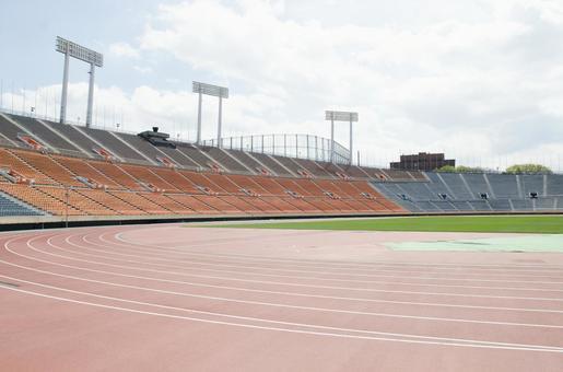 National Arena 7