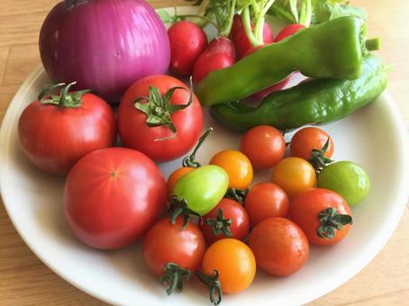 Vegetable life