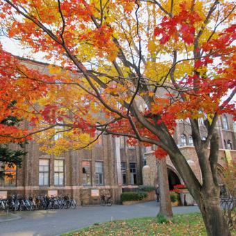 Hokkaido University Museum and Autumn Leaves