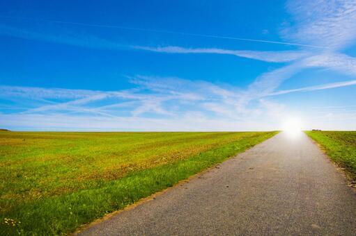 Scandinavian grasslands, blue skies and roads