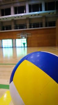 体育馆和排球