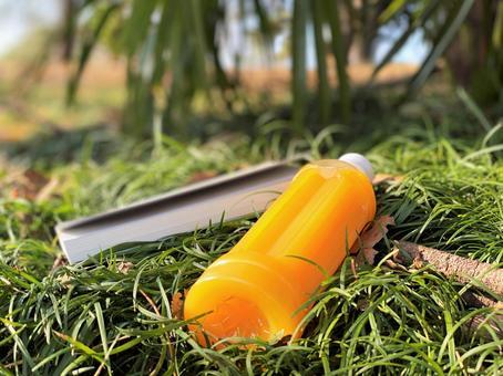 桔子汁和躺在草坪上的書