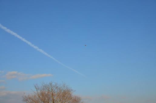 天空与风筝E
