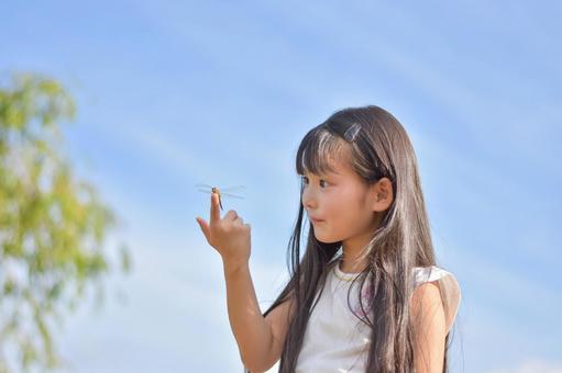 Children observing a dragonfly