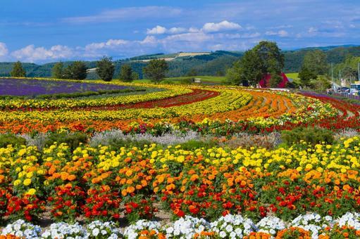 Land of the Hills / Asumo no Oka 2