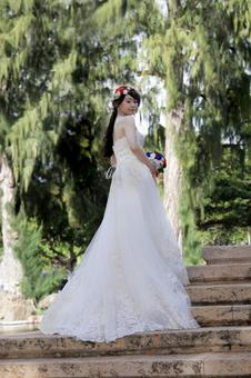 Wedding resort wedding bride