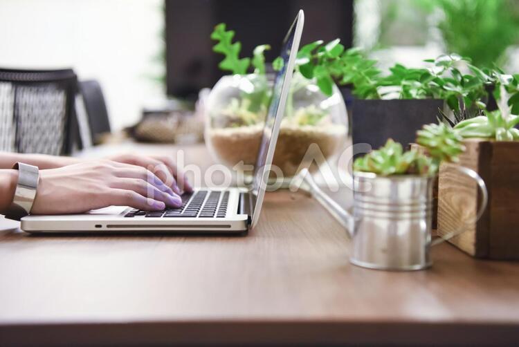 ノートパソコンと観葉植物の写真