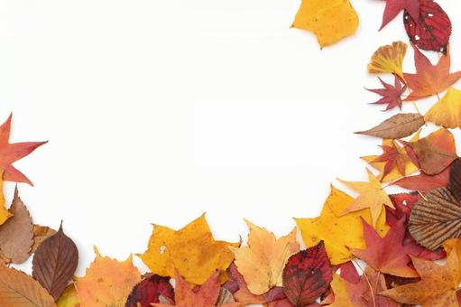 Fallen leaf frame 3