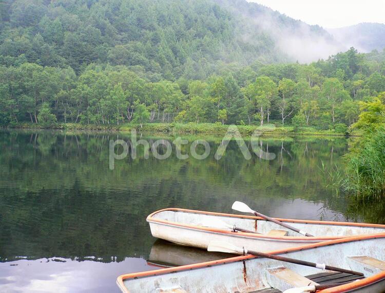 新緑の志賀高原の写真